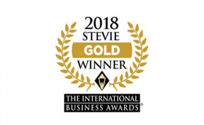 Gold Stevie Award – Entrepreneur of the Year 2018